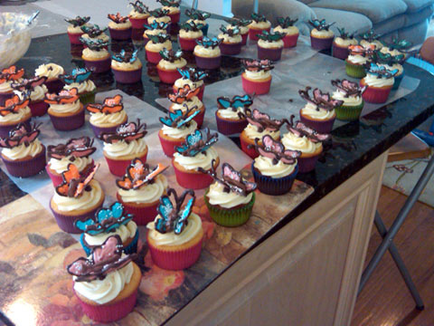 Many Butterfly Cupcakes